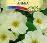 Cемена Примула Альба 0,05г (Гавриш)