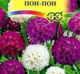 Семена Примула  Мелкозубчатая  Пон-Пон,смесь 0,03г