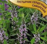 Семена пустырника сердечного Самарский  ТМ «Гавриш» (0,1г)