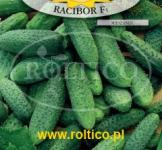 Семена огурца Рацибор 5г (Roltiko Польша)