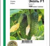 Семена огурца Эколь F1 100шт (Syngenta Голландия)