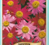 Семена Пиретрум гибридный Робинзон 0,1г (Legutko Польша)