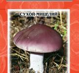 Семена сухой мицелий Рядовка фиолетовая 10г