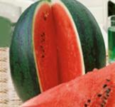 Семена арбуза Сахарный малыш 1г
