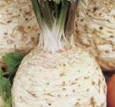 Семена сельдерея корневого Эдвард 0,5г