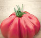 Семена томата Шарпей розовый 0,1г