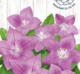 Семена Ширококолокольчик розовый 0,05г