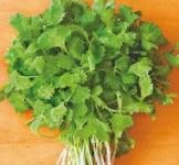 Семена кориандра  Слоуболт 1кг