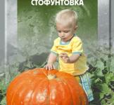Семена тыквы Стофунтовка 20г