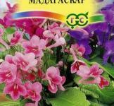 Семена Стрептокарпуса Мадагаскар смесь 5шт