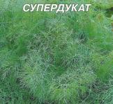 Семена укропа Супердукат 20г