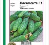 Семена огурца Пасамонте F1 100 шт (Syngenta Голландия)