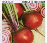 Семена свеклы столовой Тонда ди Кьожжа 15г (Коуел Италия)