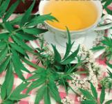 Семена валерианы лекарственной 0,1г