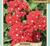Семена Вербена Спаркл 0,1г (Legutko Польша)