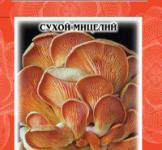Семена сухой мицелий грибов Вешенка обыкновенная 10г