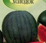 Семена арбуза Холодок 1г (ТМ Гавриш)