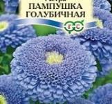 Семена Астры Пампушка голубичная (0,3г)