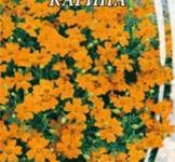 Семена Бархатцев мексиканских Карина (0,2г)