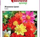 Семена Георгины Идеал смесь (0,1г)