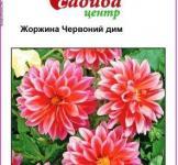 Семена Георгины Красный дым (0,1г)