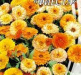 Семена Календулы низкорослой Фиеста (1г)