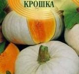 Семена тыквы Крошка 2г ( ТМ Гавриш)