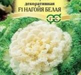 Семена Капусты декоративной Нагойя белая (7шт)