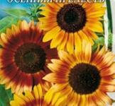 Семена Подсолнуха  декоративного Осенняя прелесть (1,5г)
