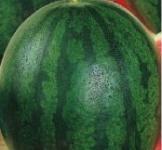Семена арбуза Скорик 1г ( ТМ Гавриш)