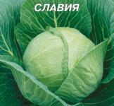 Семена капусты белокочанной Славия 10г