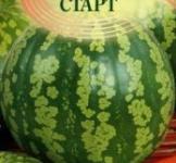 Семена арбуза Старт 1г ( ТМ Гавриш)