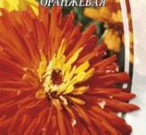 Семена Циннии Кактусоцветной оранжевой (0,3г)
