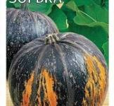 Семена тыквы Зорька 2г ( ТМ Гавриш)