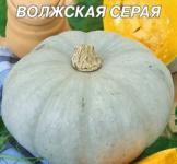 Семена тыквы Волжская серая  20г