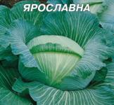 Семена капусты белокочанной Ярославна 10г Семена Украины