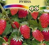 Семена земляники Руяна ТМ «Гавриш» 0,03г