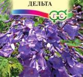 Семена Жакаранда Фиалковое дерево 3шт