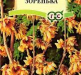 Семена зимоцвета раннего Зоренька ТМ «Гавриш» (3шт)