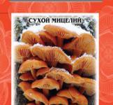 Семена сухой мицелий грибов Опенок зимний 10г