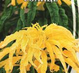 Семена Амарант двухцветный Солнце 0,3г