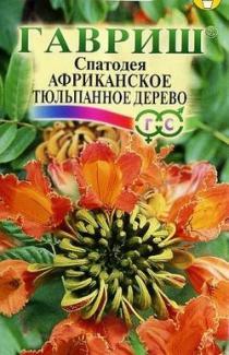 Насіння Спатодеї Африканське тюльпанне дерево 0,05г