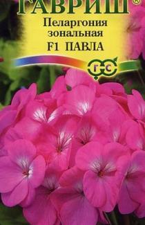 Семена Пеларгонии зональной Павла F1 4 шт.