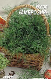 придбати насіння Кропу сорту Амброзія 3г
