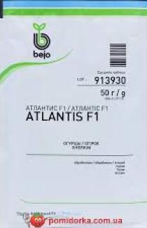 Насіння огірка Атлантіс F1 50г (Bejo Голандія)
