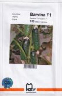 Насіння  огірка  Барвіна 500 шт