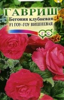 Насіння  Бегонія    Гоу-Гоу  Вишнева  4шт
