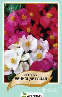 Насіння Бегонія вічноквітуча суміш 0,01г (Legutko Польща)
