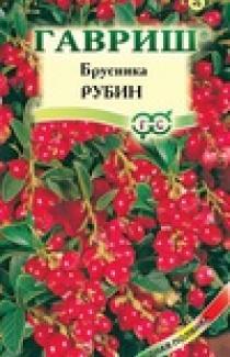 Насіння Брусниця Рубін 20шт (Гавриш)