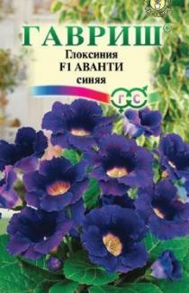 Насіння Глоксинія Аванті синя 5шт (Гавриш)